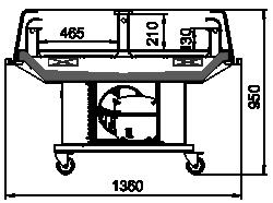Virginia self (R290)